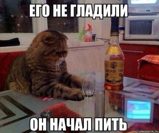 http://dotnetpark.ru/1391857333__z.jpg