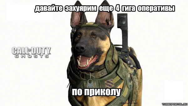 Call Of Duty Ghosts - собака